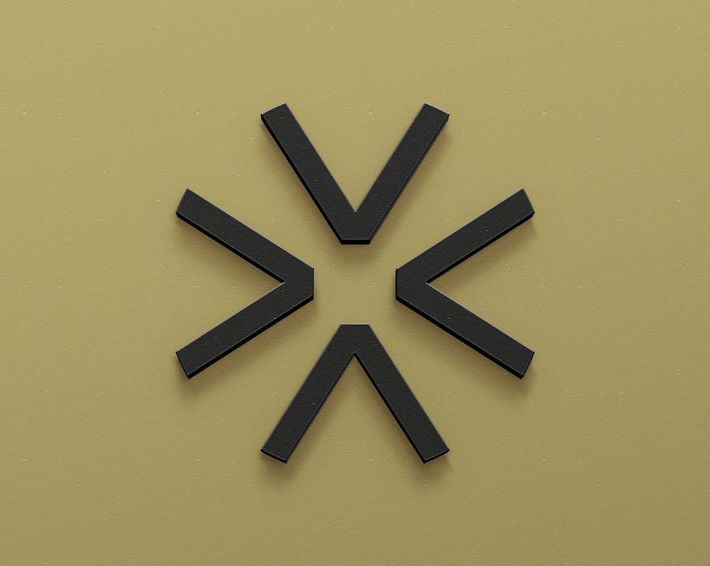 Logotyp Skillway - Bravissimo